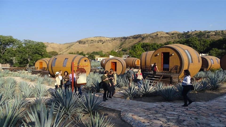 Tequila Barrel Hotel 2 (1)