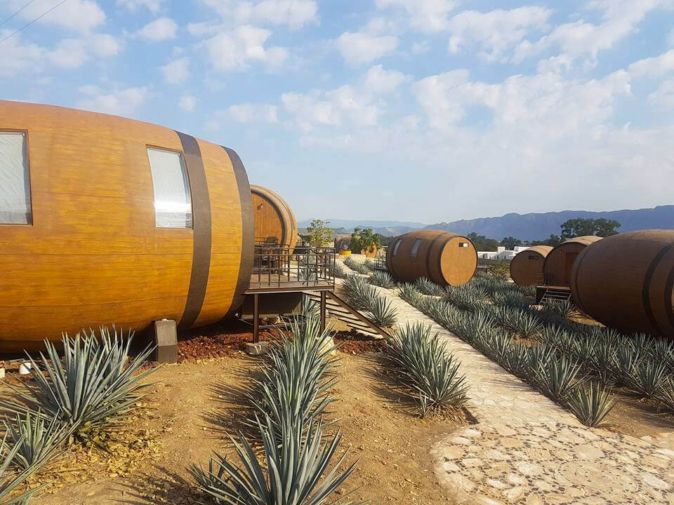 Tequila Barrel Hotel 5 (1)