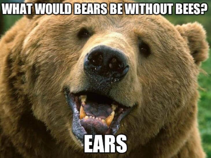 animal puns 2 (1)