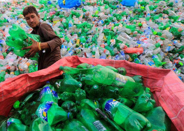 塑料吃酶功能(1)