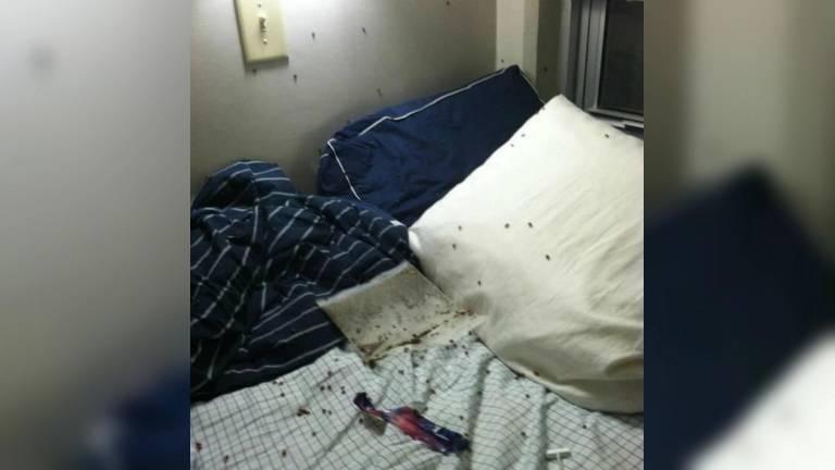 roommate jokes 9 (1)
