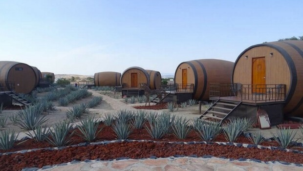 tequila barrel hotel feat (1)