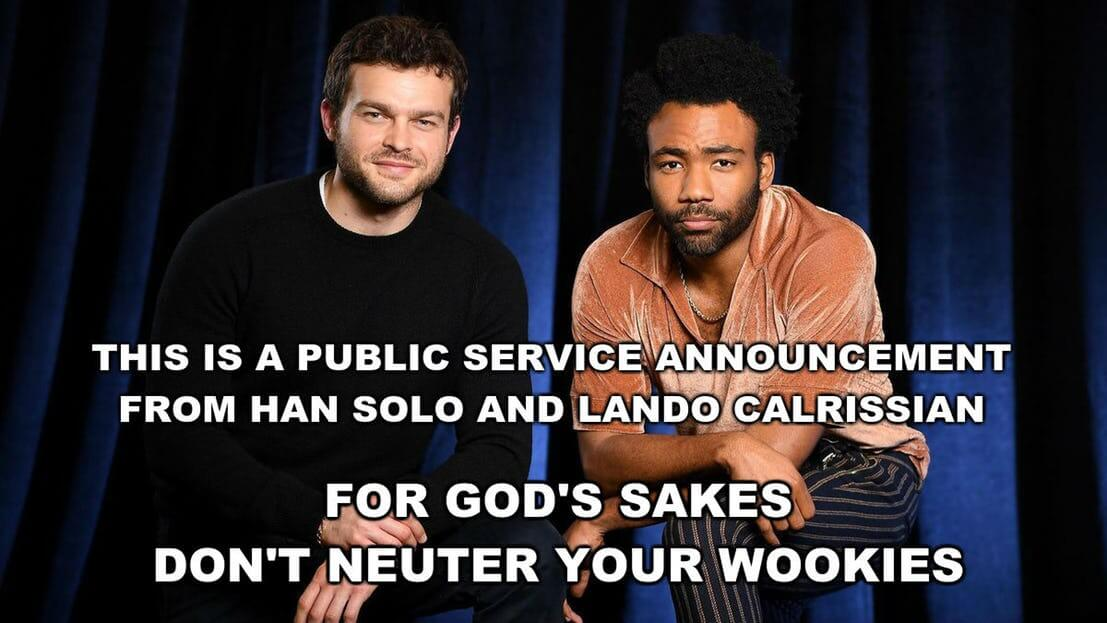 Solo And Lando Calrissian pictures 10 (1)