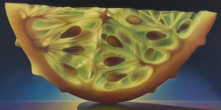 dennis wojtkiewicz detaild fruit paintings 10 (1)