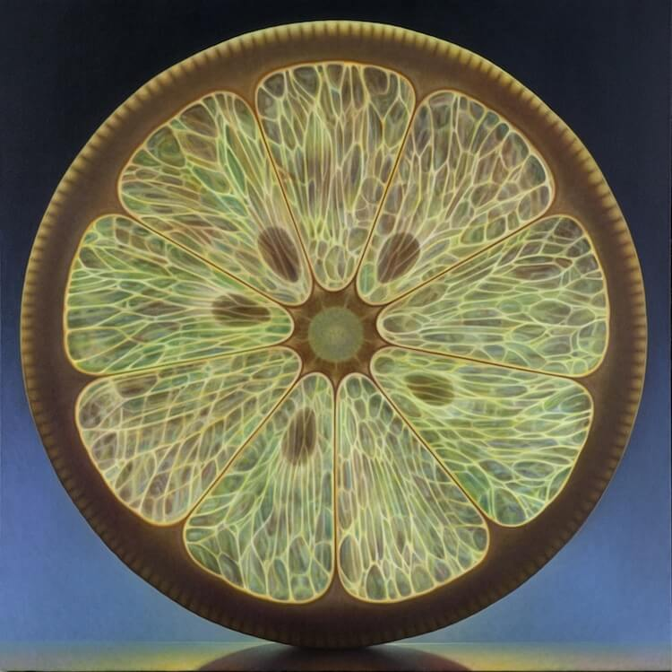 dennis wojtkiewicz detaild fruit paintings 9 (1)