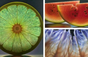 dennis wojtkiewicz fruit paintings feat (1)