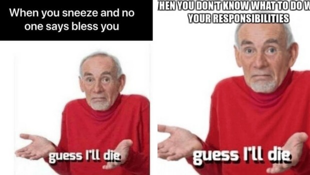 guess i'll die memes feat (1)