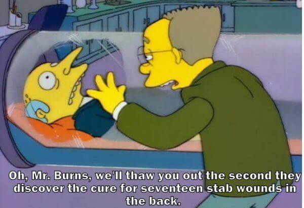 mr burns one liners 13 (1)