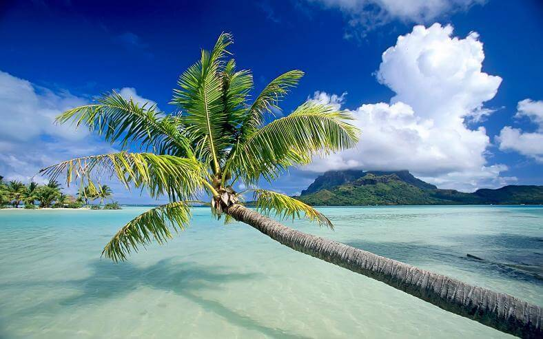 bora bora photos 24 (1)