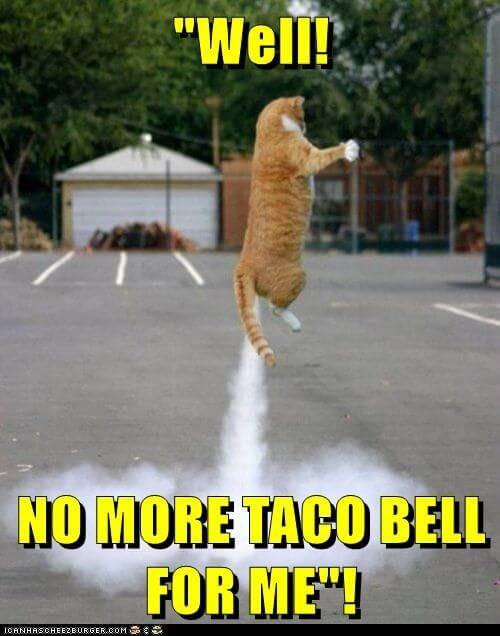 taco jokes 26 (1)