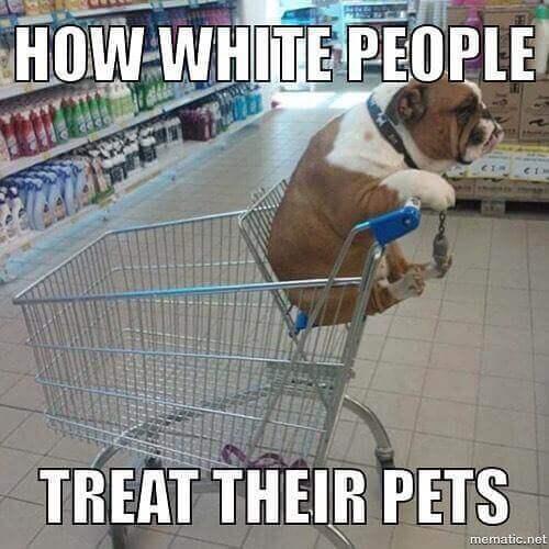 white people memes 10 (1)