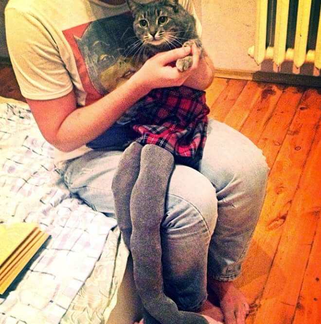 cats in tights 13 (1)