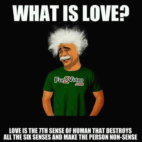 love meme 51 (1)