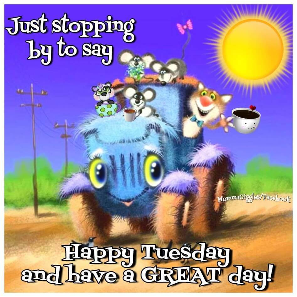 Image result for have a great tuesday funny