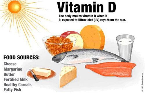 vitamin d why do dogs sunbathe 1 (1)