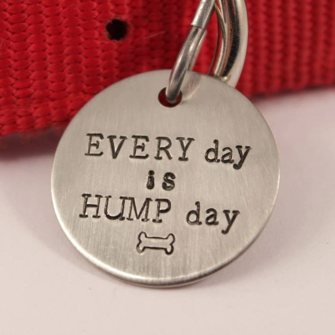 hilarious-dog-collar-tags10
