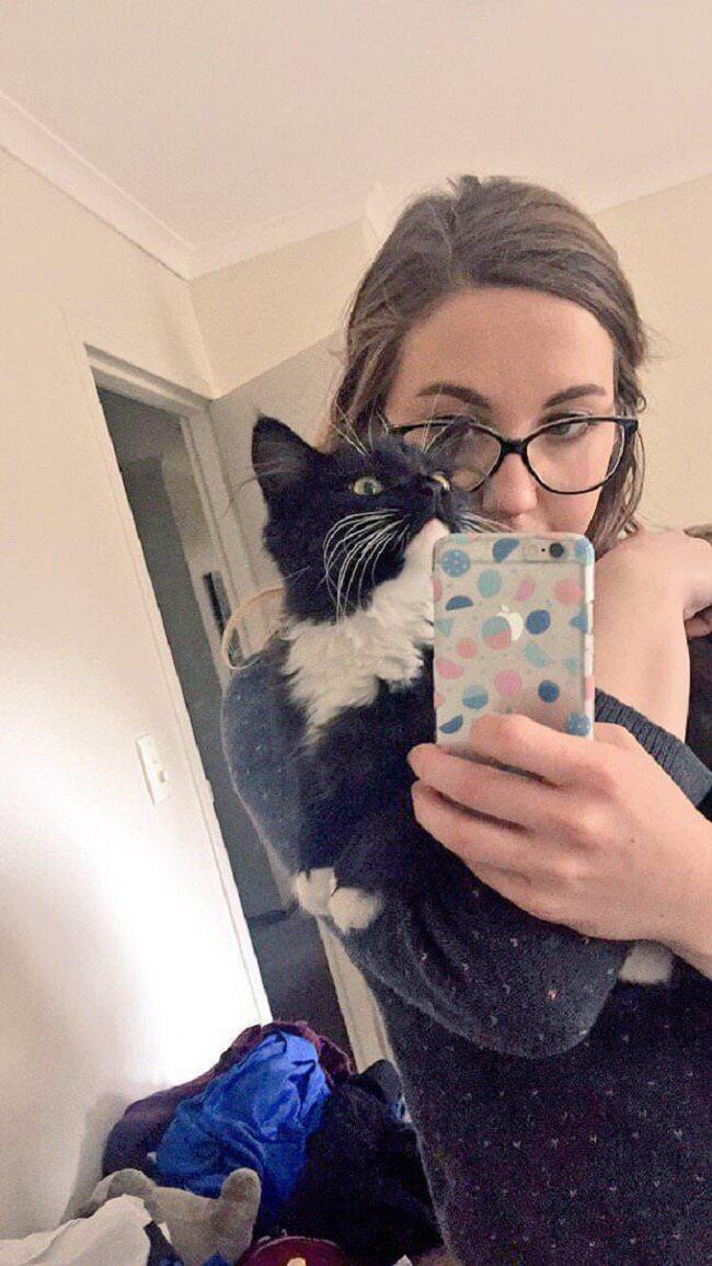 milestones-for-cat-owners4