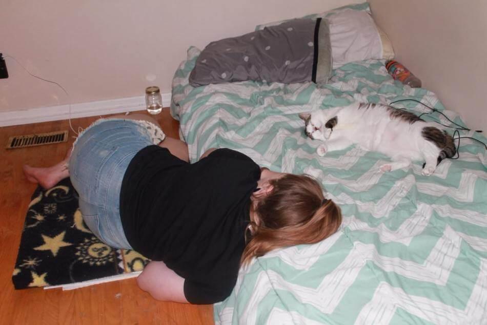 milestones-for-cat-owners5