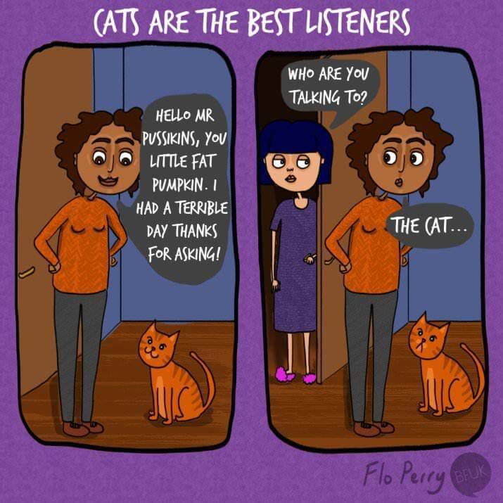 milestones-for-cat-owners9