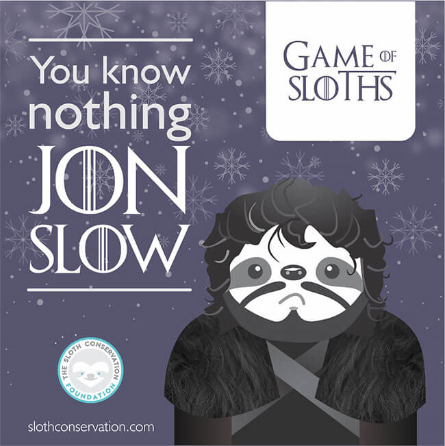 game of sloths