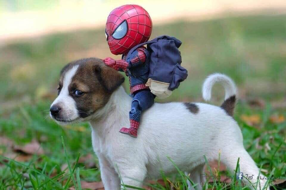 Spider-Man and his cute pals saving the world with their cuteness overload
