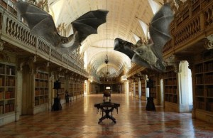 Libraries Use Live Bats as Insect Repellant