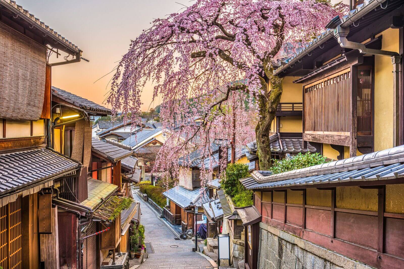 10 places to travel to in 2020 Japan
