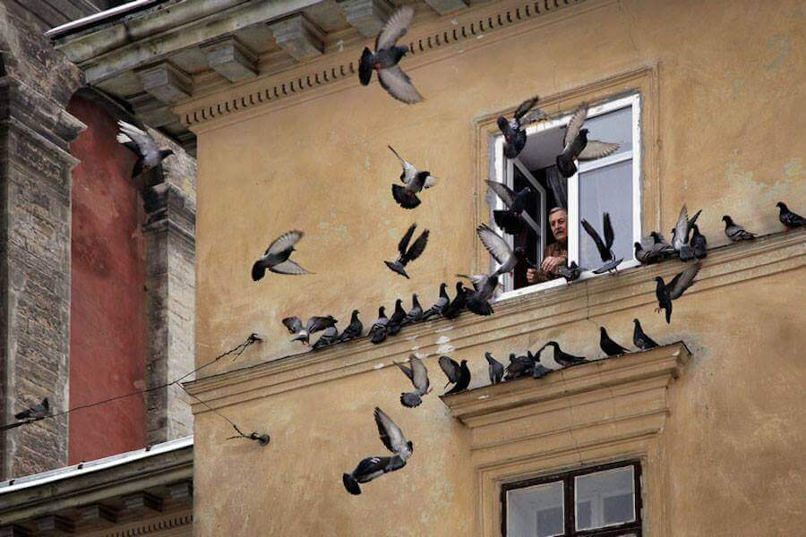 Street Photography from the heart of Russia from Alexander Petrosyan 13
