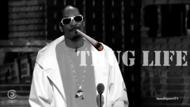 thug life sunglasses meme - snopp doggy dog