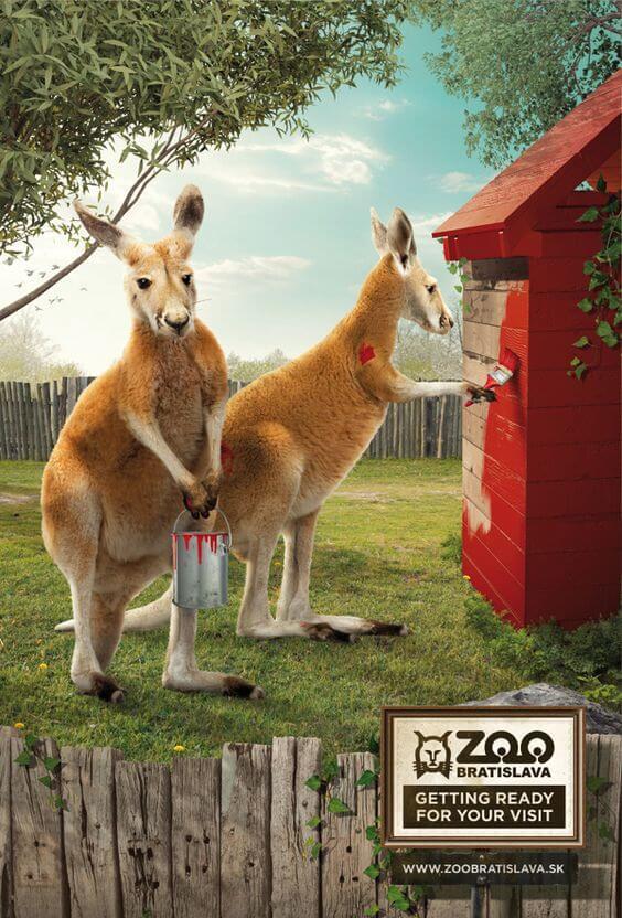zoo advertisements 15 (1)