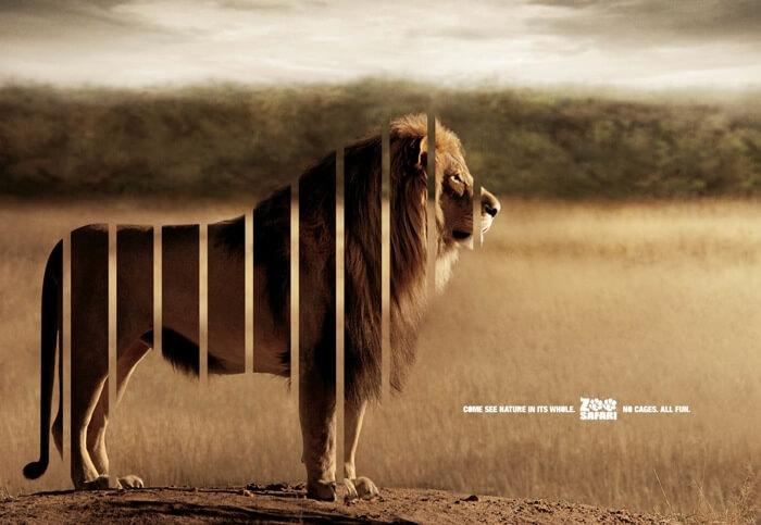 zoo advertisements 5 (1)