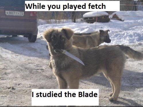 i studied the blade