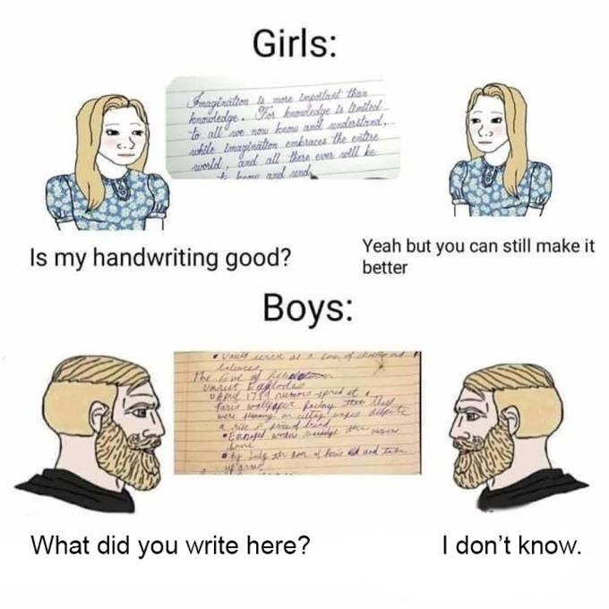 Boys vs Girls in meme
