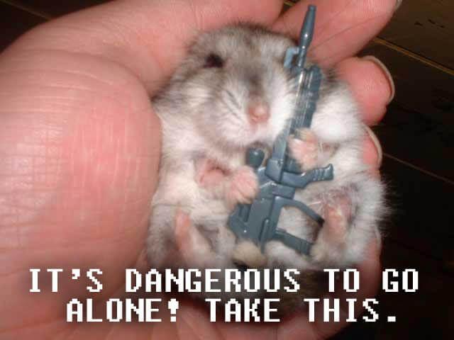 It's dangerous to go alone! Zelda